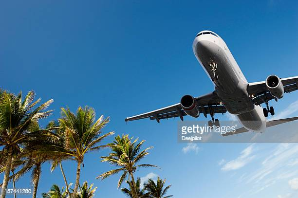 Avión aterrizando y pase por encima de palmeras