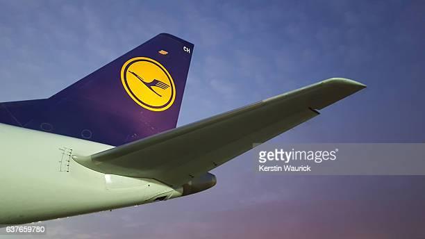 airplane airbus with lufthansa sign -  empennage - flugzeugheck stock-fotos und bilder