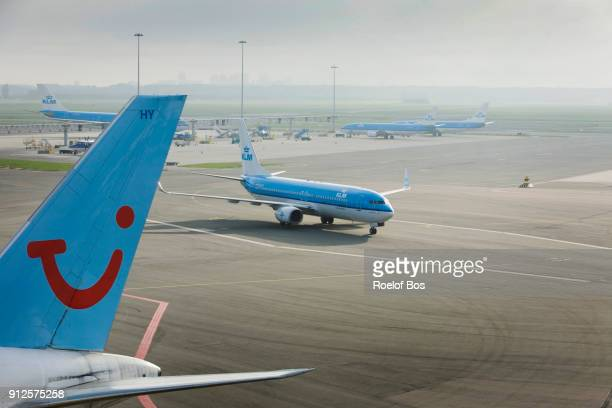 airplane amongst other airplanes on platform at amsterdam schiphol airport on a sunny day - bos stock pictures, royalty-free photos & images