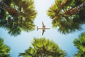 airplane flight. tropical vacations.