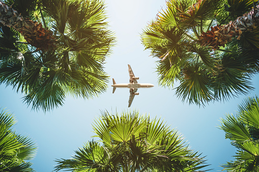 airplane flight. tropical vacations. 1066253974