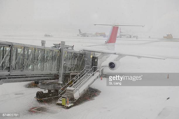 Airplane in snowstorm