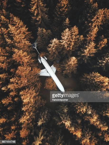 森の中の飛行機