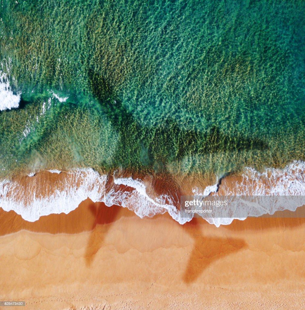 Flugzeug über den Strand in Australien : Stock-Foto