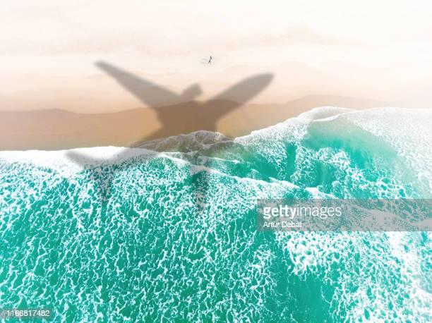 airplane shadow flying above paradise beach taking from window. - flugzeug stock-fotos und bilder