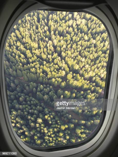 Airplane window view on mountain forest
