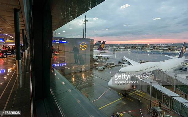 Airplanes of the German airline Lufthansa stand at Frankfurt Airport on October 09, 2014 in Frankfurt, Germany. Vereinigung Cockpit, the labor union...