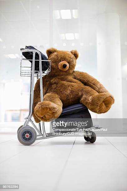 Airport trolley with luggage and stuffed animal