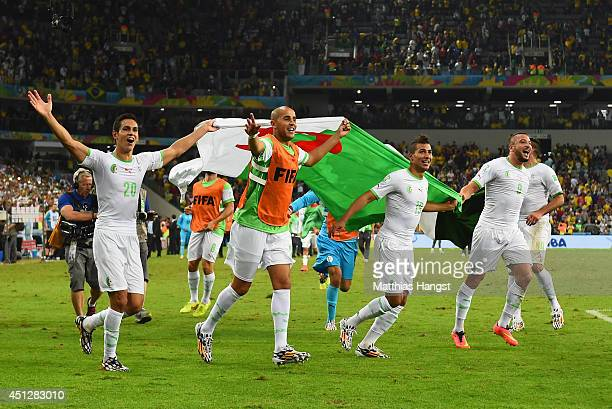 Aissa Mandi and Madjid Bougherra of Algeria celebrate with teammates after a 1-1 tie during the 2014 FIFA World Cup Brazil Group H match between...