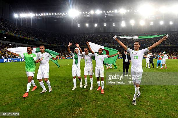 Aissa Mandi of and players of Algeria celebrate qualifying for the knock out stage after the 11 draw in the 2014 FIFA World Cup Brazil Group H match...