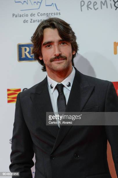Aitor Luna during the 23rd edition of Jose Maria Forque Awards at Palacio de Congresos on January 13 2018 in Zaragoza Spain