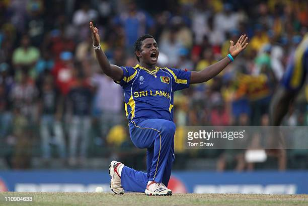 Ajantha Mendis of Sri Lanka celebrates taking the wicket of Graeme Swann of England during the 2011 ICC World Cup QuarterFinal match between Sri...