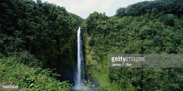 Akaka Falls, Honolulu, Hawaii