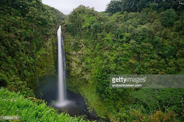 Akaka Falls on Big Island, Hawaii