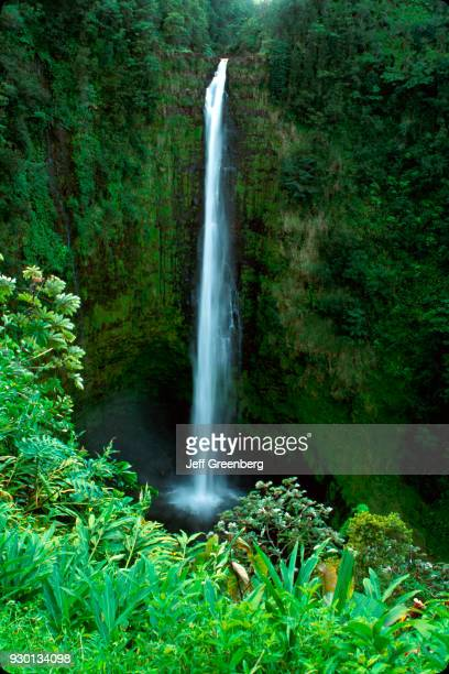 Akaka Falls State Park 420 foot drop into streameroded gorge Hawaii