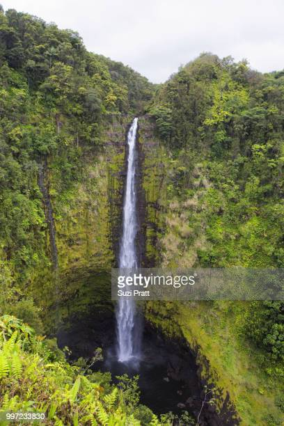 Akaka Falls State Park Waterfall Big Island Hawaii