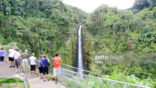 Akaka Falls viewpoint on the Big Island, Hawaii