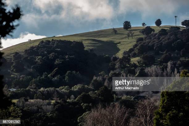 Akaroa hills 2