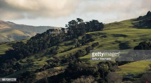 Akaroa hills
