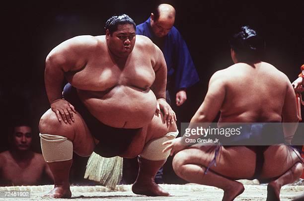 Aki Bono during a sumo wrestling bout
