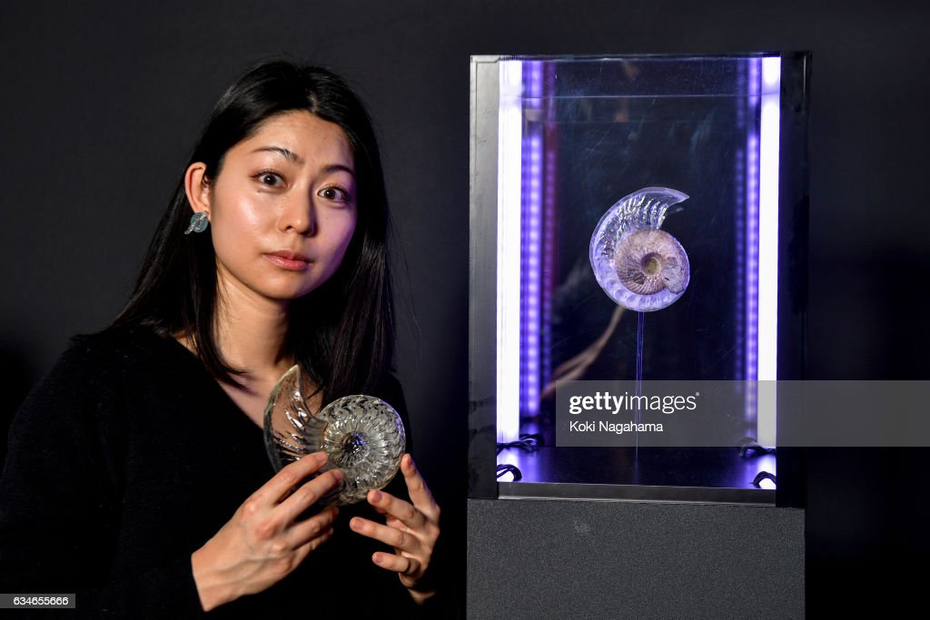 Aki Inomata poses for a photograph at Roppongi Hills MAT LAB Mori Tower 52F, TOKYO CITY VIEW on February 11, 2017 in Tokyo, Japan.