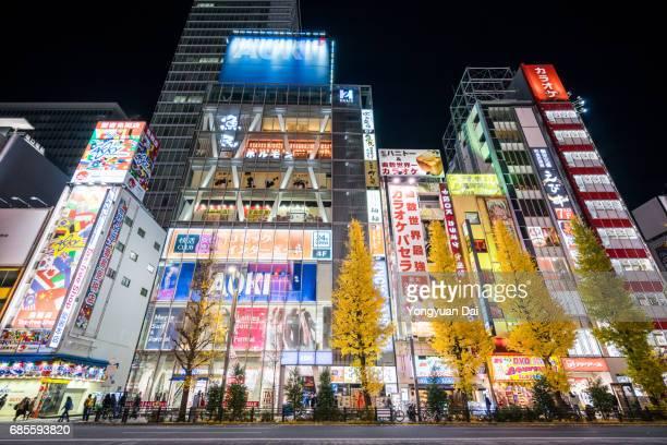 Akihabara Electric Town at Night