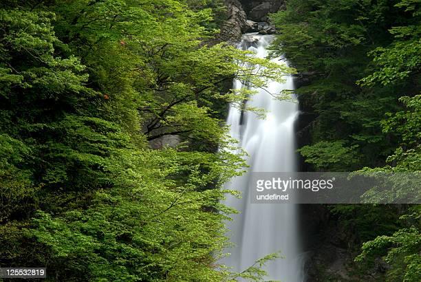 Akiu waterfall in Sendai