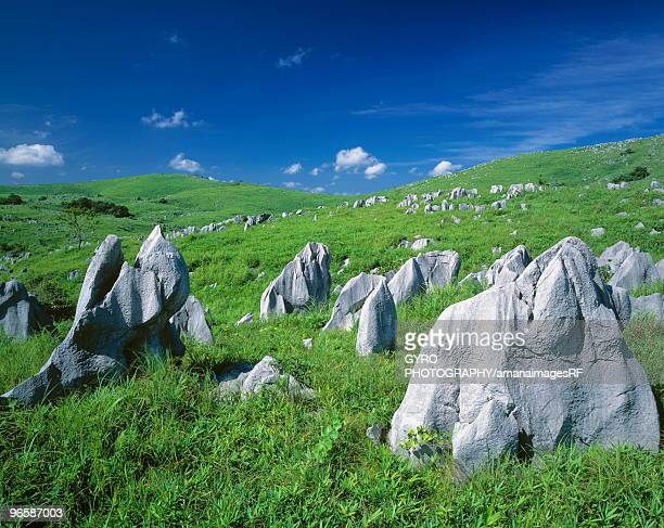 akiyoshidai karst pinnacles in mine, yamaguchi prefecture, japan - 山口県 ストックフォトと画像