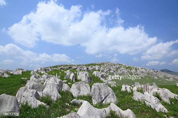 akiyoshidai plateau, mine, yamaguchi, japan - 山口県 ストックフォトと画像