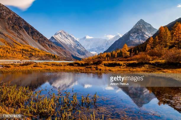 akkem lake in the fall. belukha mountain, altai mountains, siberia, russia - 自然保護区 ストックフォトと画像