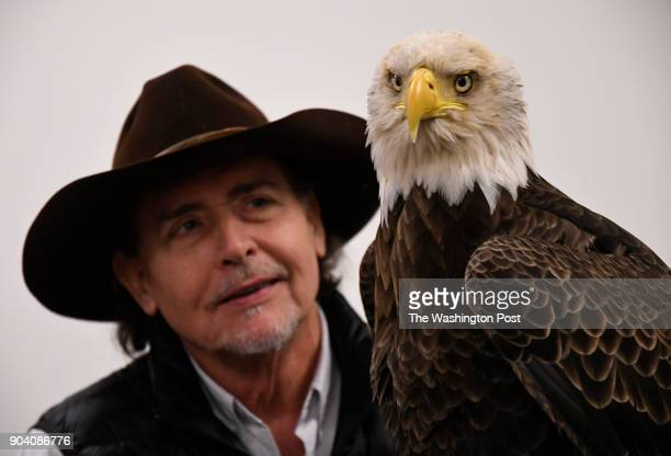 Al Cecere founder president and CEO of the American Eagle Foundation with Challenger a nonreleasable bald eagle at Lincoln Financial Field in...