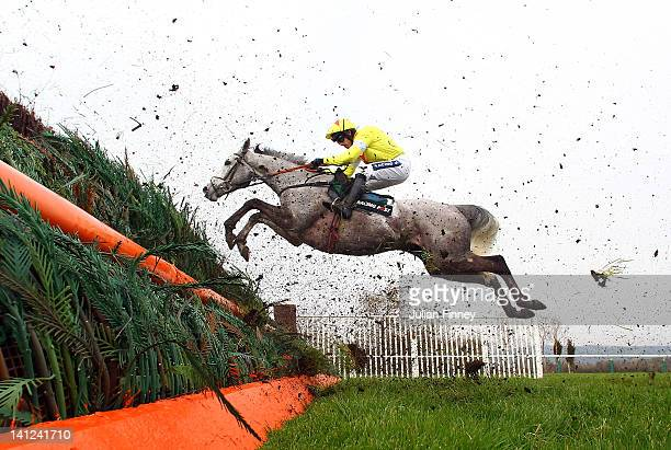 Al Ferof ridden by Ruby Walsh jumps a fence in the Racing Post Arkle Challenge Trophy Steeple Chase run during day one of the Cheltenham Festival at...