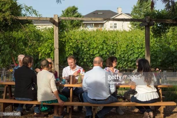 Al Fresco Dining at California Vineyard Wine Tasting