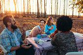group friends having al fresco meal