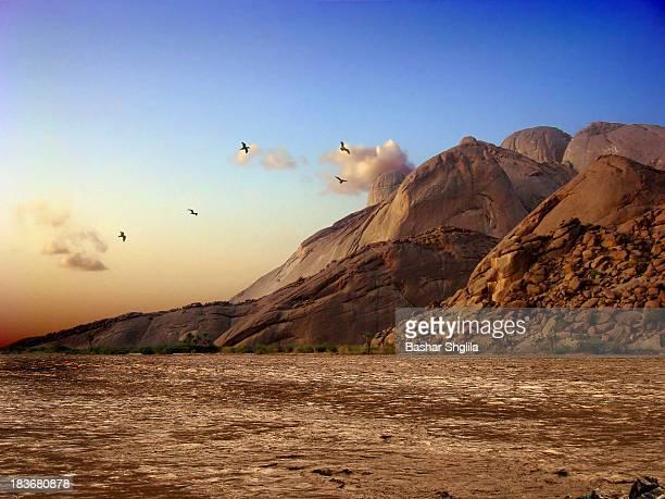 al gash river - eritrea stock-fotos und bilder