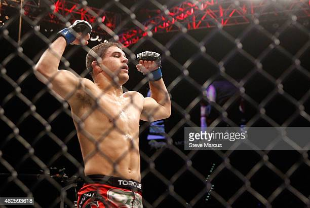 Al Iaquinta celebrates after defeating Joe Lauzon in their lightweight bout during UFC 183 at the MGM Grand Garden Arena on January 31 2015 in Las...