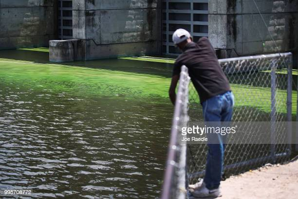 Al McLemore fishes near the green algae blooms that are seen at the Port Mayaca Lock and Dam on Lake Okeechobee on July 10 2018 in Port Mayaca...