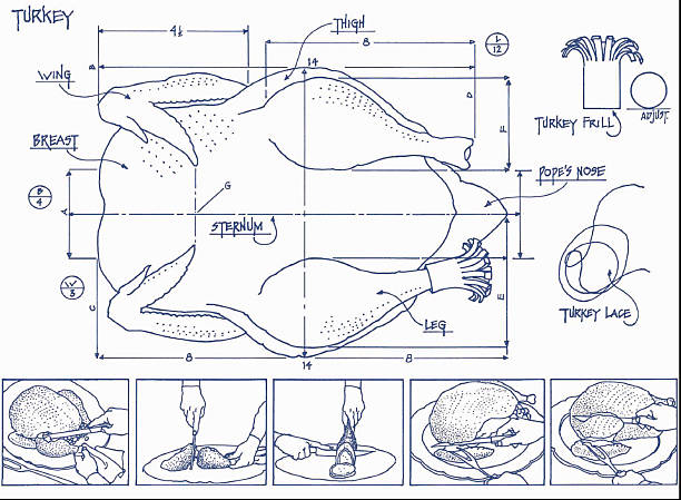Turkey blueprint pictures getty images turkey blueprint malvernweather Image collections