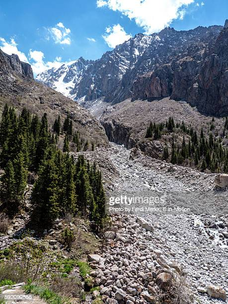 ala archa national park snowy peaks - bishkek stock pictures, royalty-free photos & images