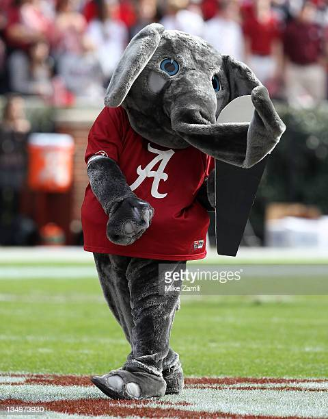 Alabama Crimson Tide mascot Big Al pumps up the crowd before the game between the Alabama Crimson Tide and the Georgia Southern Eagles at BryantDenny...