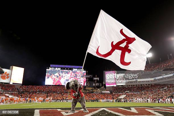 Alabama Crimson Tide mascot Big Al waves a flag in the end zone during the first half of the 2017 College Football Playoff National Championship Game...