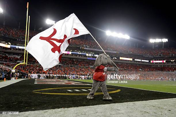 Alabama Crimson Tide mascot Big Al waves a flag in the end zone during the second half of the 2017 College Football Playoff National Championship...