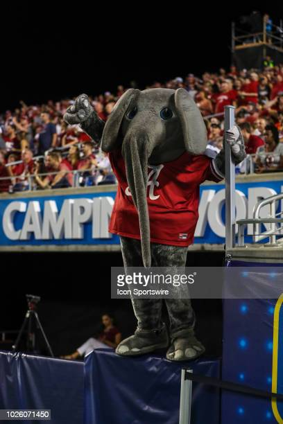 Alabama mascot Big Al celebrates during the football game between the Alabama Crimson Tide and the Louisville Cardinals on September 1 2018 at...