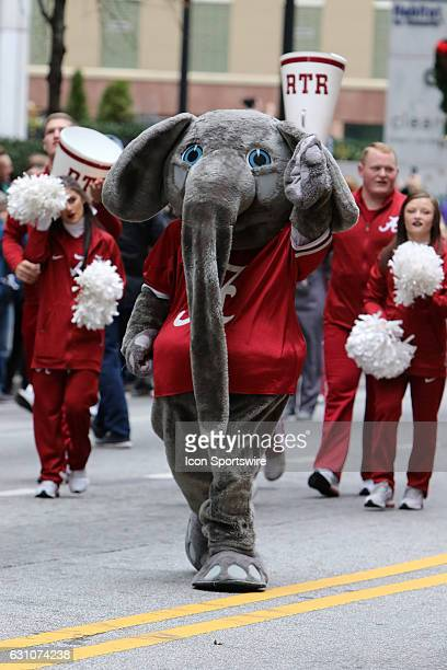 Alabama mascot Big Al marches in the Peach Bowl Parade before the College Football Playoff Semifinal at the ChickfilA Peach Bowl between the...