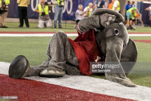 Alabama mascot Big Al performs during the Camping World Kickoff game between the Alabama Crimson Tide and the Louisville Cardinals on September 01 at...
