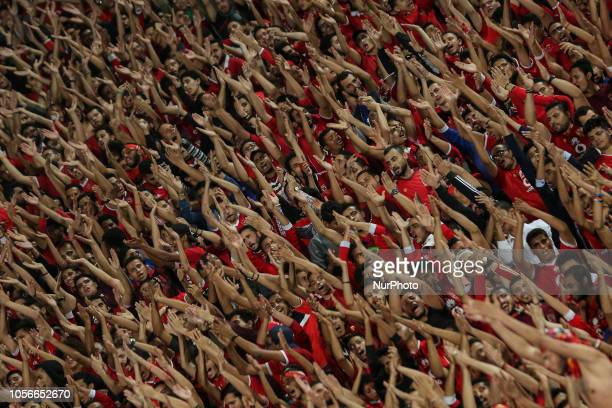 AlAhly supporters cheer for their team during their first leg of Final African Champions League CAF match Between Al Ahly and Esperance de Tunis at...