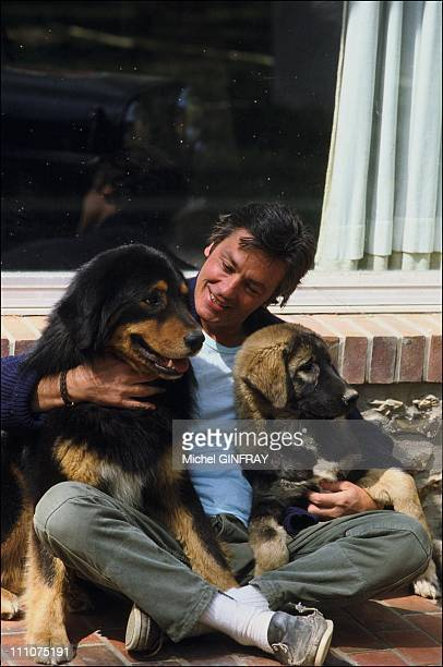 Alain Delon with his dogs around 1980 in France