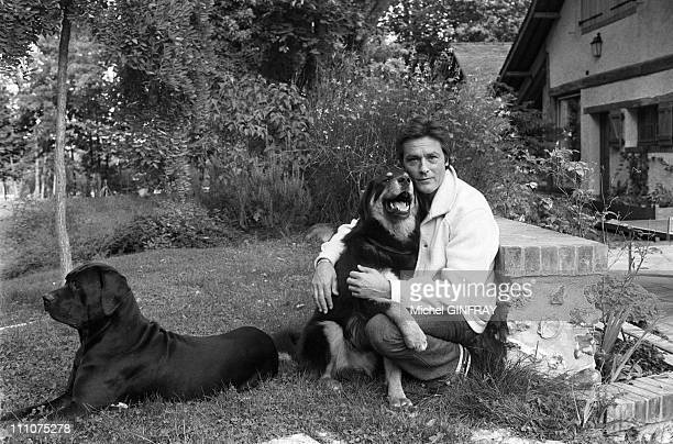 Alain Delon with his dogs in Douchy France in November 1980