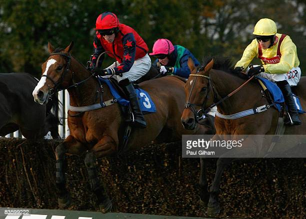 Alam ridden by SP Jones in action alongside Mandingo Chief ridden by Wilson Renwick during the Geneva Investment Group Handicap Steeple Chase race at...