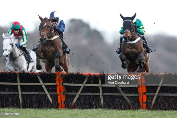Alan Johns riding Point Of Principle clear the last to win The Ascot Schools Art Competition Novices' Hurdle Race from Dame De Compagnie at Ascot...